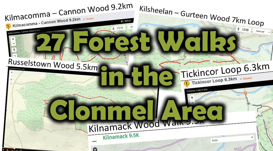 27 Forest Walks In The Clonmel Area