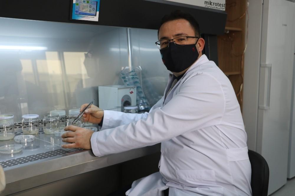 Bilim adamından çiftçilere kuraklığa karşı önemli tavsiyeler