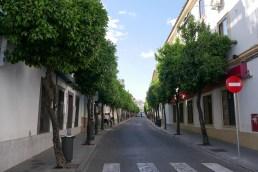 street_-7