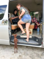 iPhone 1 oct-3