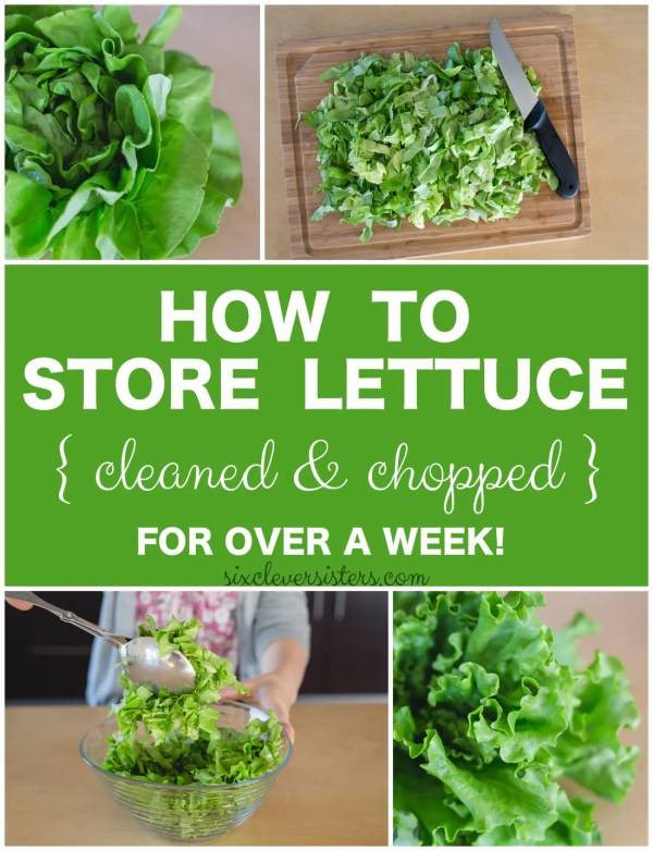 Storing lettuce   Storing Chopped Lettuce   Healthy Eating   In the fridge   This is how to store lettuce in your fridge for at least a week! Keep it cleaned and chopped so you can make a healthy lunch or dinner in no time at all!