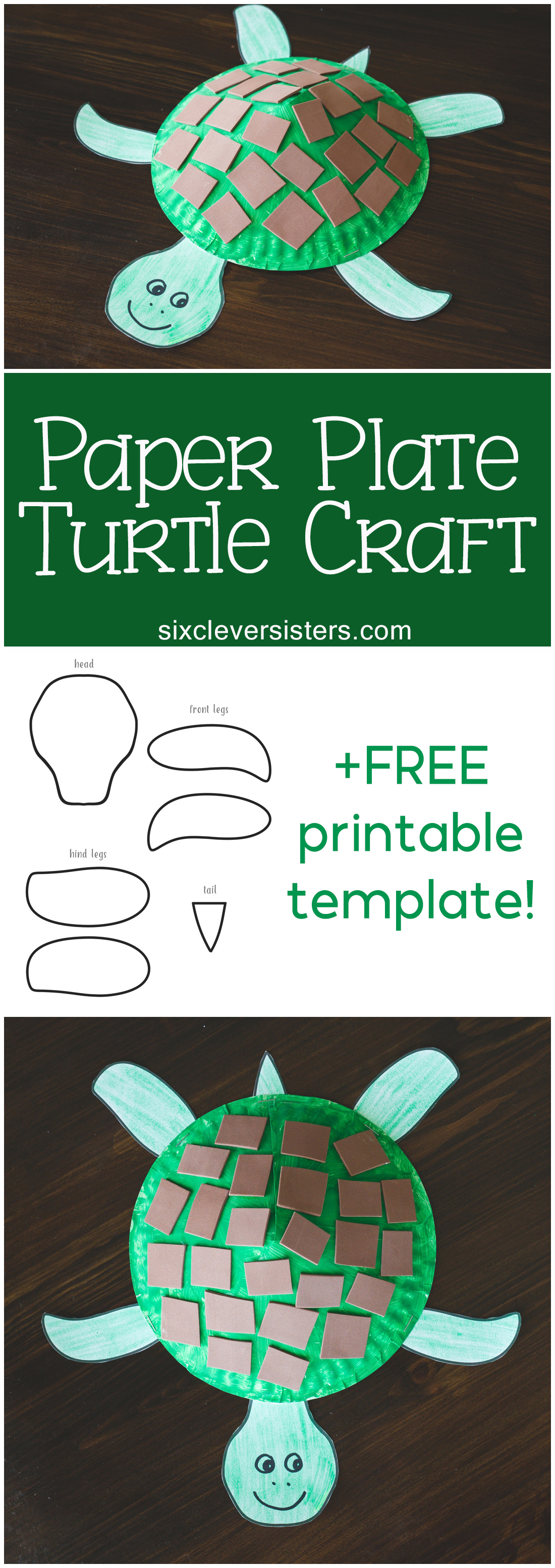ART AND CRAFT FOR KIDS: HOW TO MAKE TOY TORTOISE OUT OF DISPOSABLE ... | 3107x1100