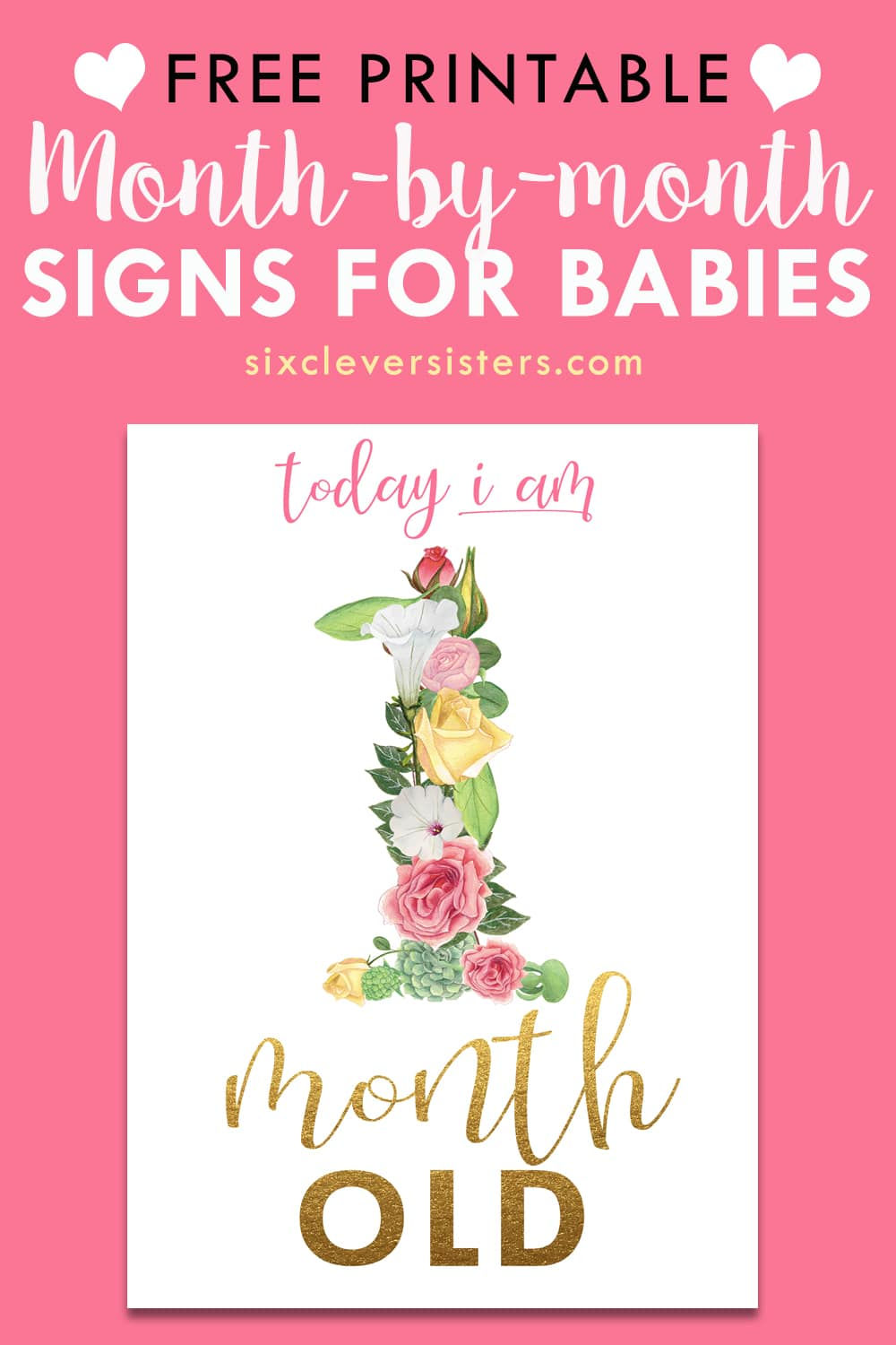 photo regarding Printable Baby Month Signs called Floral Thirty day period Signs or symptoms for Youngster Photographs - 6 Sensible Sisters