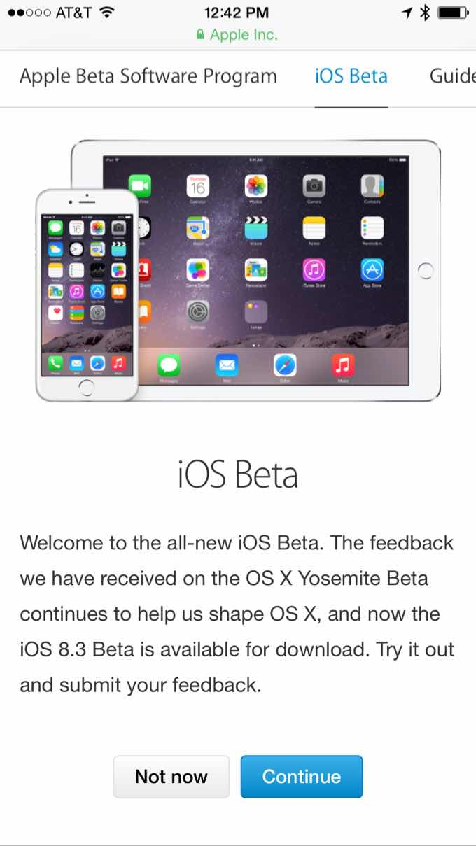 iOS Beta Program