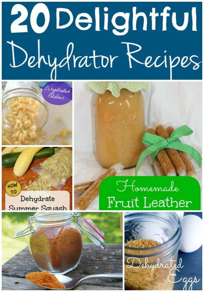 Do you love to use your dehydrator? Wanting to learn? These 20 Delightful Dehydrator Recipes are just what you need!