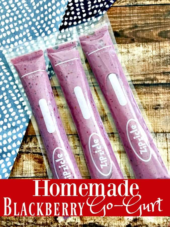 Tired of spending so much for those yummy Go Gurt snacks that your kids love?This Homemade GoGurt recipe is perfect for hungry kids! Your snack recipes will never be the same again once you make this homemade GoGurt Recipe! Blackberry, Strawberry or whatever flavor you want!