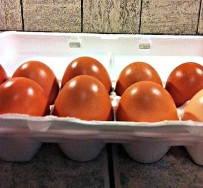 Stocked up on eggs? Worried they'll spoil before you can use them? Let me show you how to preserve eggs for long-term storage with NO refrigeration needed!