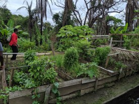 Second shot of one of the permaculture gardens