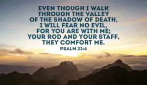 Psalm 23 v4