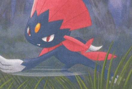 weavile dp 40 art
