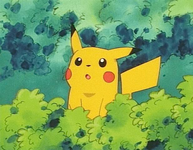 pikachu bush surprised