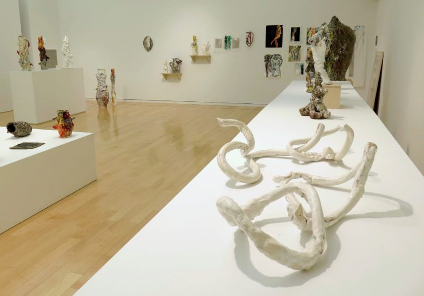 """This photo shows part of the gallery. On the right-hand side of the image, a long white table stretches from the foreground toward the back wall, with the work """"Lazo 018"""" in the foreground, """"Exquisite Nomads"""" at the other end, and a few sculptural objects in between. """"Lazo 018"""" is comprised of four thin, serpentine, clay objects in two pairs (one of oblong loops leaning against each other without intersecting; one of a non-looped piece reaching into and up through a closed loop). Beyond the table and along the back wall are several two-dimensional works (leaning against or hung on the wall) and three-dimensional works (on small shelves or the floor). On the left-hand side of the image, in the background, are a tall pedestal with three objects and a short platform (in partial view) with three objects visible."""