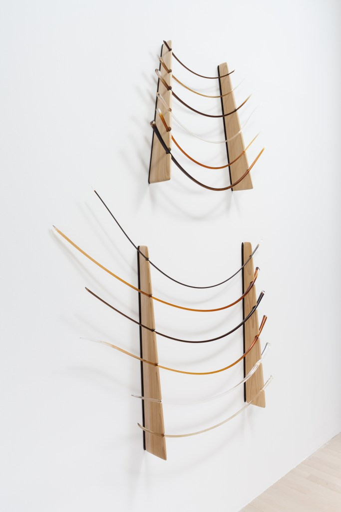 Image: A large sculptural piece hanging on the gallery wall. The materials include glass, hair, and wood. The glass objects, shaped like enlarged eyelashes, are placed inside of a nook in the wood. Photo by Robert Chase Heishman.