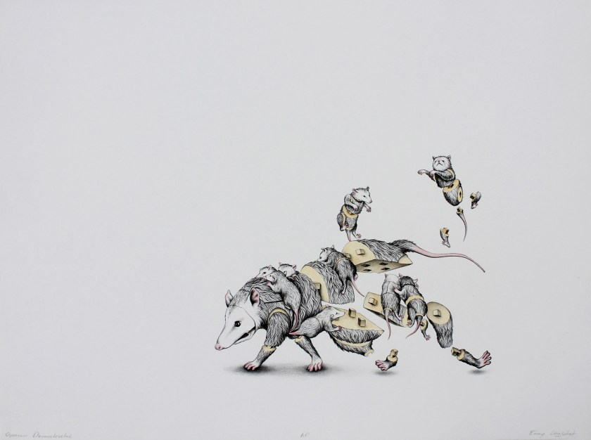 Image: Emmy Lingscheit, Opossum Deconstruction, lithograph with hand-coloring, 29 x 22 inches, 2011. An opossum is pictured with nine babies hanging off its body, and a couple floating in the air above. The mother opossum is walking toward the left edge of the image. Its body and the bodies of the babies are partially deconstructed, as if made from connecting pieces that lock together. The fur on the animals is done in black, white, and gray. The noses, feet, are pink. The areas on the animal bodies that should be connected to each other are a pale yellow. Photo courtesy of Emmy Lingscheit.