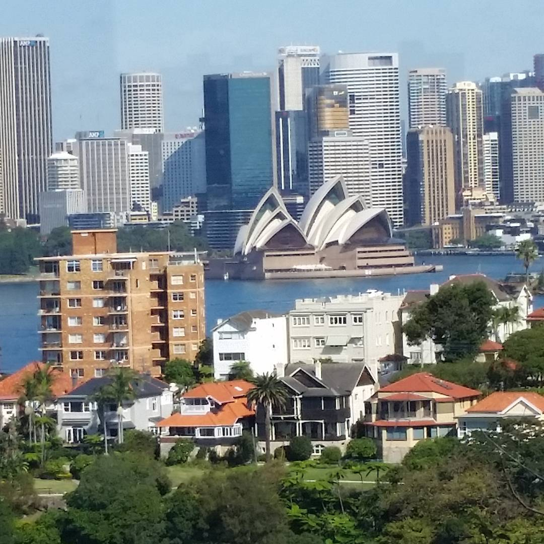 SYDNEY FROM A FRIEND'S