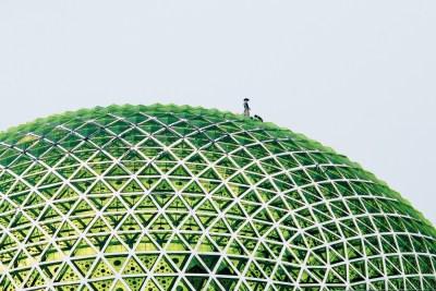 EyeEm Awards green dome.
