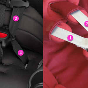 5-Point Harness vs 3 Point Harness