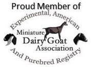 logo - member of