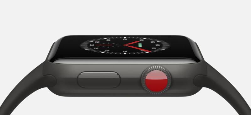 Apple Watch Edition Series 3 (5)