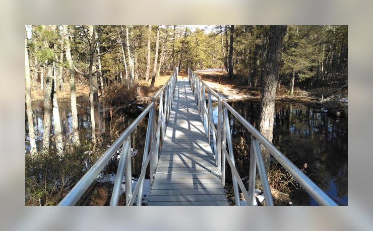 Hikes and Hops: Batsto, New Jersey - Tom's Pond Trail Bridge