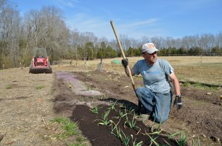 Eric Henry works in his garden beside his home. He grows various vegetables and his tractor, as well as his car, runs on biodiesel.