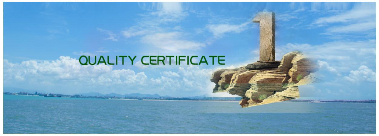 Kvalitet ISO 9001