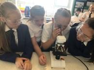 Science Class (1)
