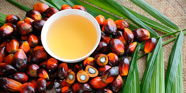 India Increases Import Duty on imports of RBD Palmolein/Palm Oil from  Malaysia