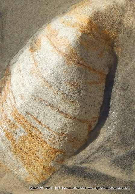 Art in Nature at Torrey Pines State Beach