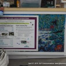 More at Descanso Beach