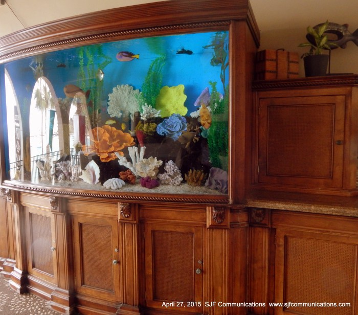 Fish Tank at Hotel Vista Del Mar