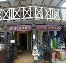 Even a psychic! (No I didn't go there)!