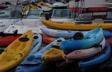 kayaks.IMG_1658