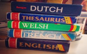 Thesaurus (and dictionaries)