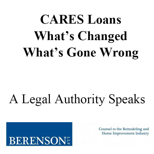 CARES Loans Graphic