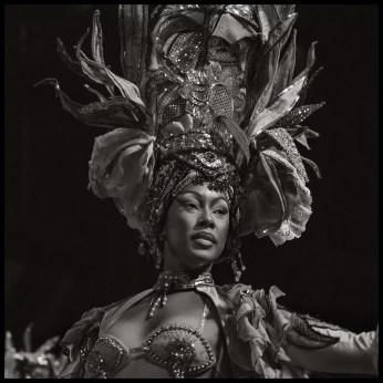 The Dancer - Havana - 2013