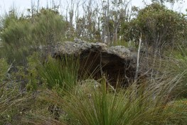 Small cave at Jervis Bay