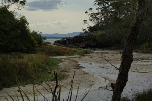 Creek near Currarung, Jervis Bay