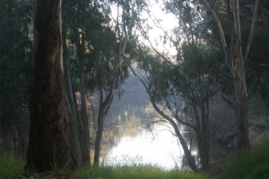 Goulburn River in Shepparton, great place to camp in the caravan park next to it