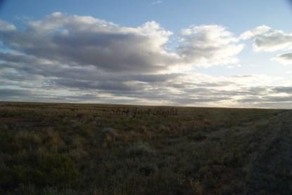 Plains near Broken Hill