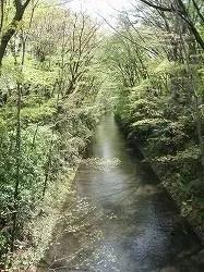 tamagawajyousui