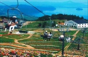 びわ湖箱館山ゆり園2017の見頃や開花情報と開園日程は?