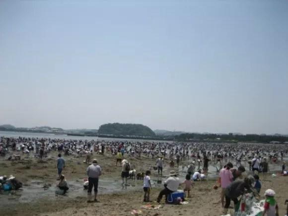 神奈川の潮干狩りおすすめスポットや穴場と潮見表!