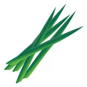 菖蒲湯の由来や意味と作り方!効能や効果はあるの?