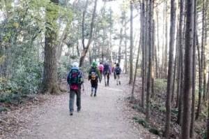 登山靴(シューズ)女性用おすすめ5選と選び方のポイント!