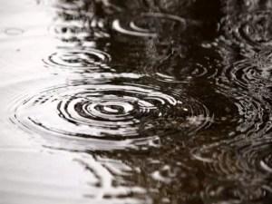梅雨入り梅雨明けの時期はいつ?入梅の意味は?