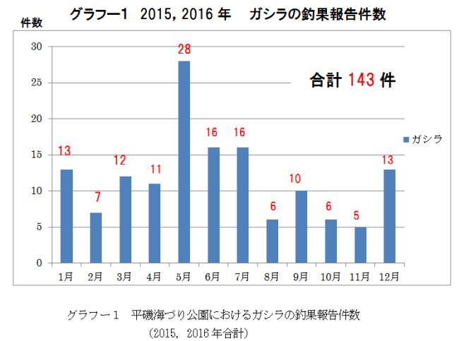 グラフー1 2015,2016年 ガシラの釣果報告件数