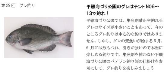 釣り ホームページ(29)要約