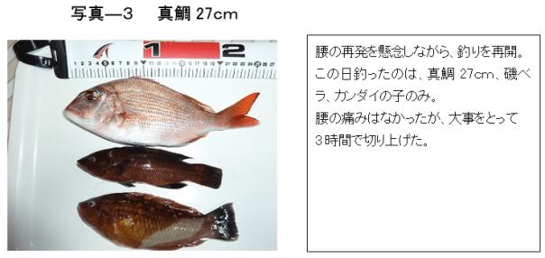 写真ー3 真鯛27cm他