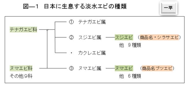 図ー1 日本に生息する淡水エビの種類